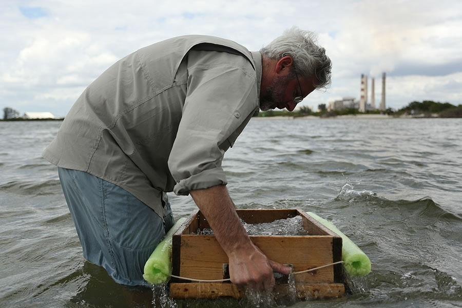 Neil Shubin sifting sand over the water