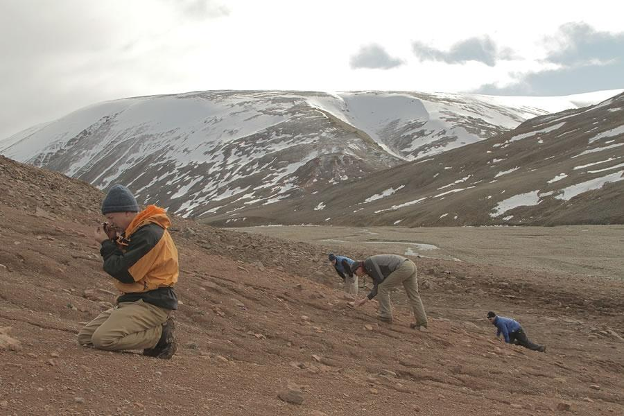 4 men looking for fossils on the ground