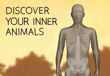 Discover Your Inner Animals