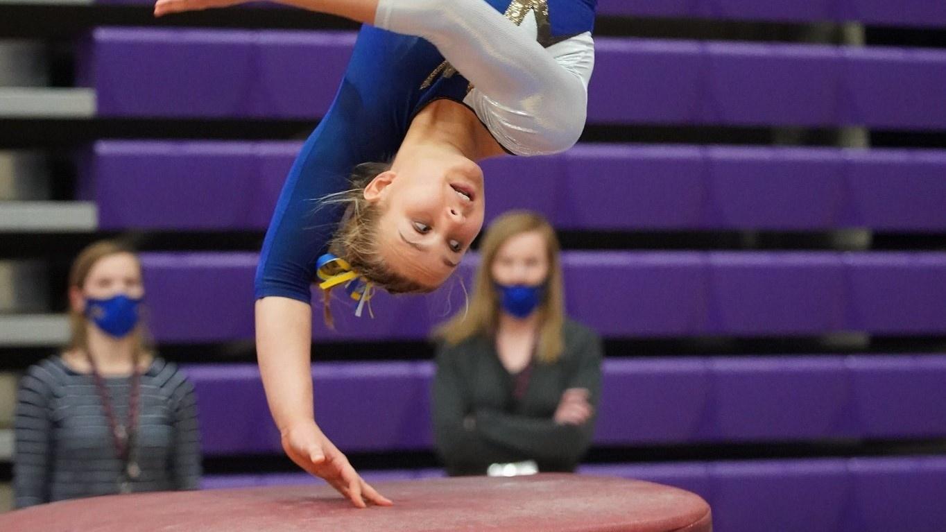 AA Gymnastics Results