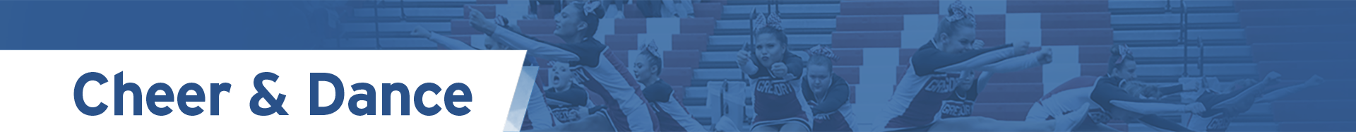 SDPB HS Cheer Dance Logo