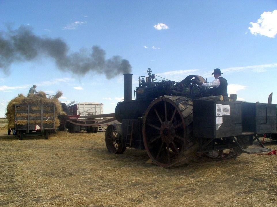 Steam power runs the thresher