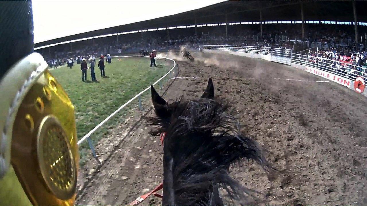 POV Horse