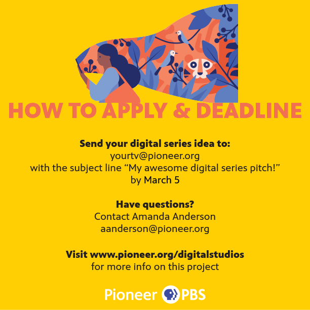 Apply for a PBS digital series opportunity, page three