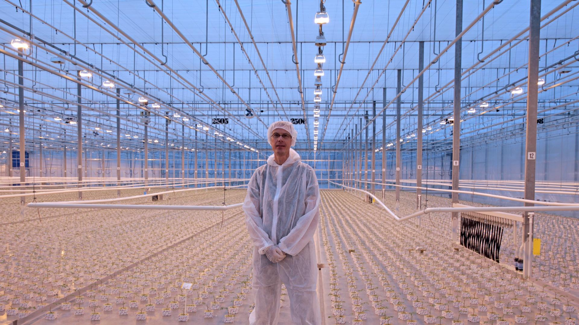 In Rotterdam, Holland, Water Management Scientist, Arjen Hoekstra, stands in a climate controlled greenhouse filled with thousands of tomato seedlings.
