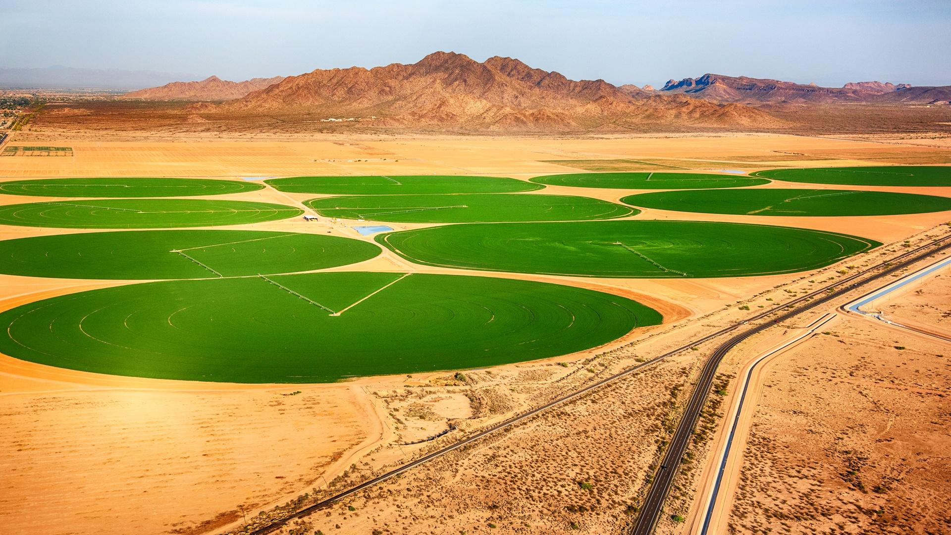 """Outside Phoenix Arizona, center pivot irrigation draws """"fossil water,"""" from deep underground. This water will take thousands of years to replenish."""