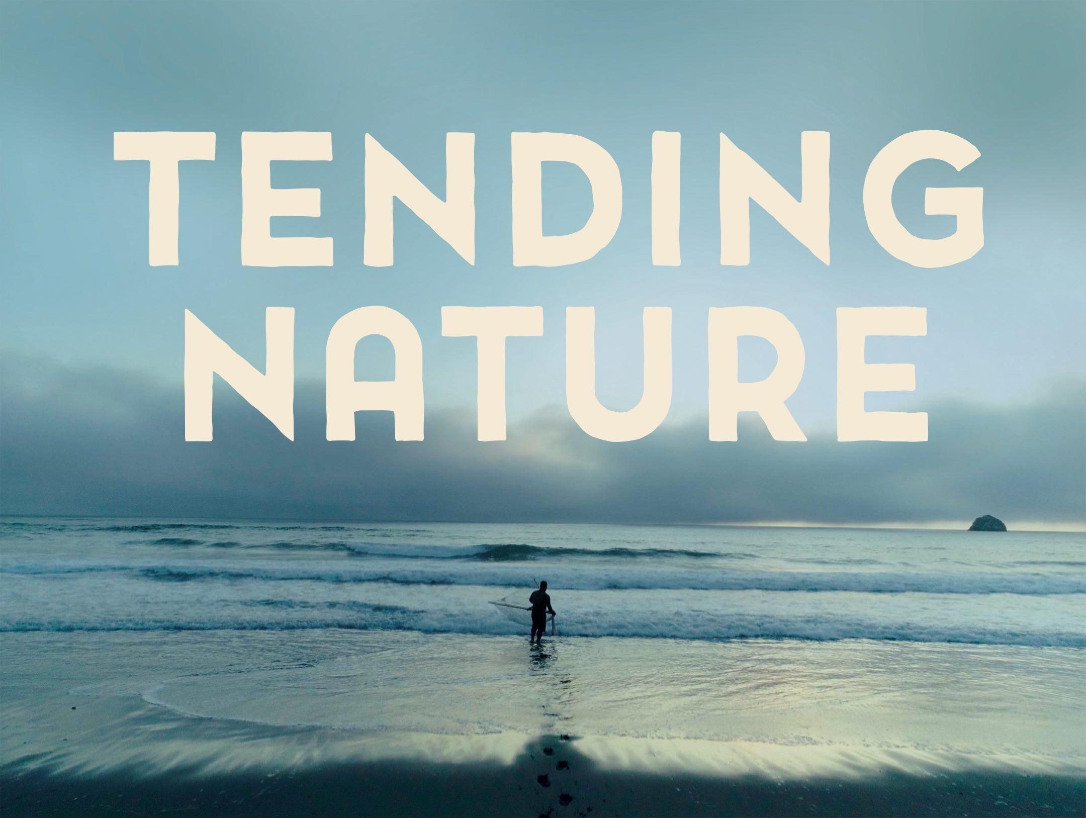 Tending Nature image