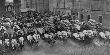 Photo of Pabst Brewery's Horse Drawn Wagons for Beer Delivery