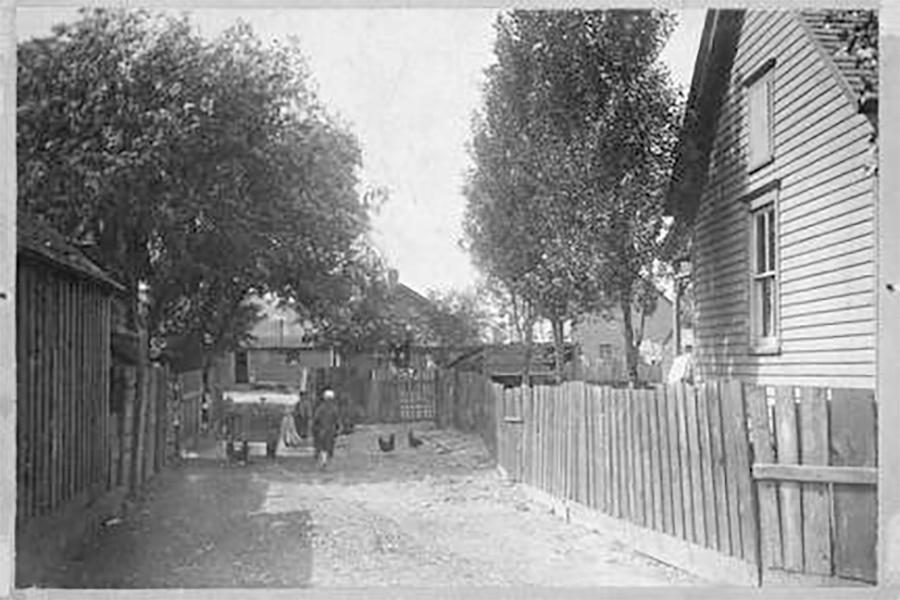 Photo of Jones Island Street with Person and Chickens