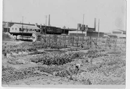 Photo of WPA Relief Garden, Works Progress Administration