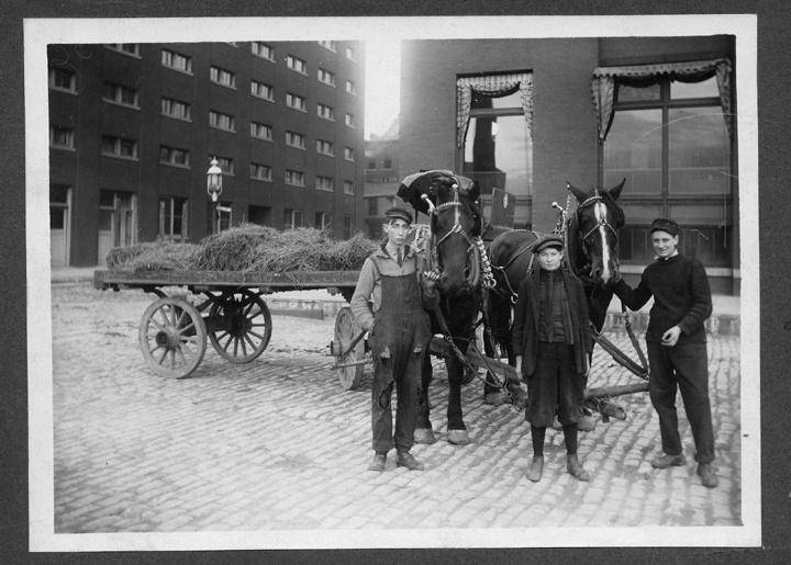 Photo of Irish Boys with Horse in the Third Ward