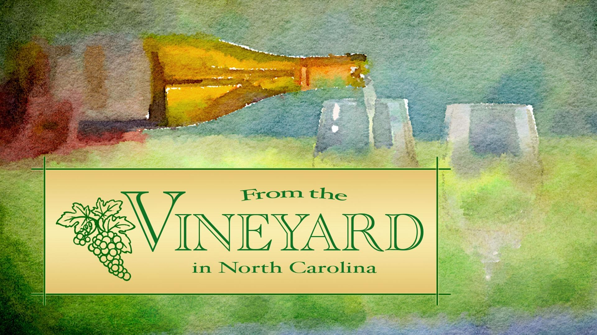 From the Vineyard in North Carolina