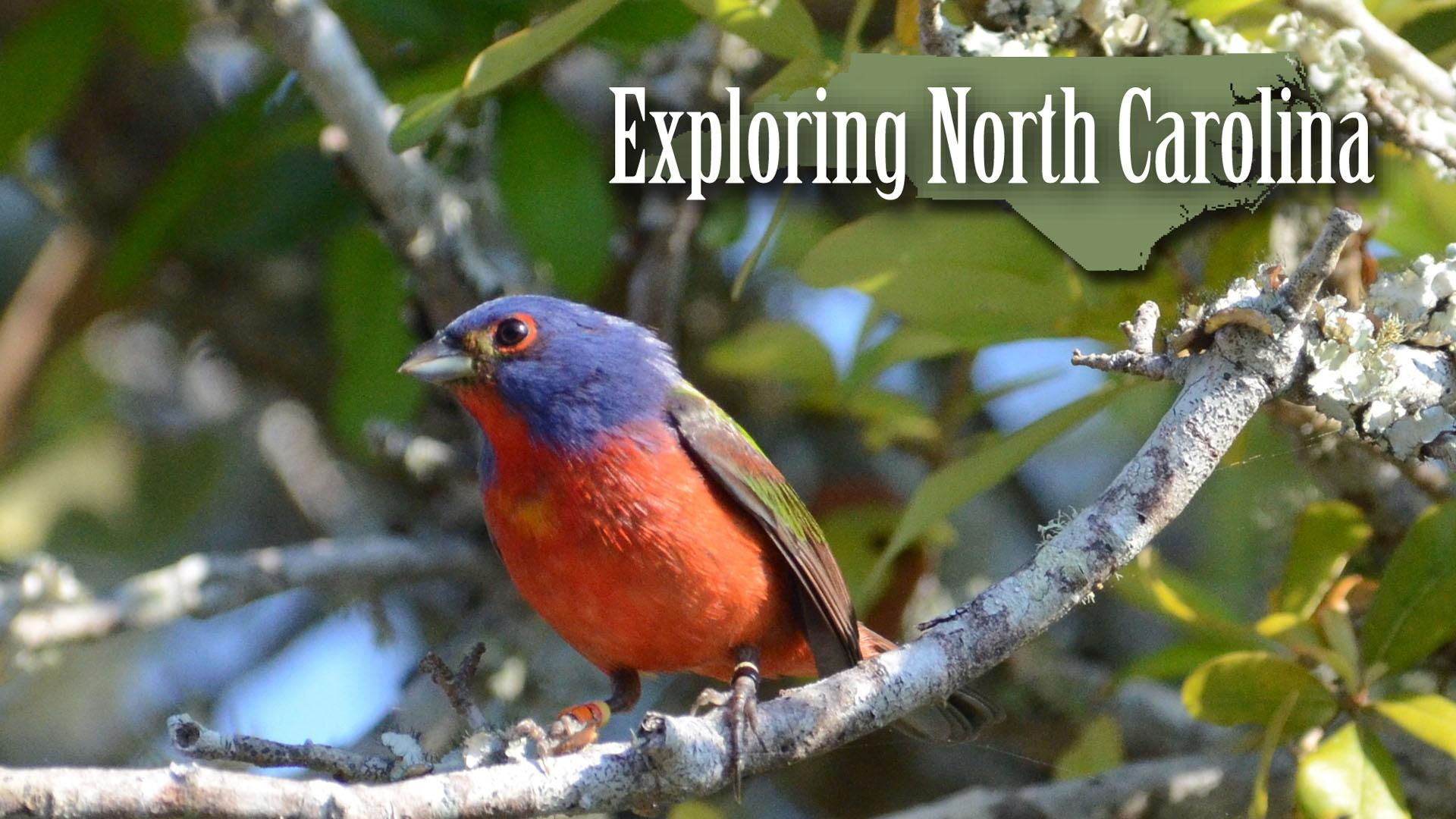 Exploring North Carolina