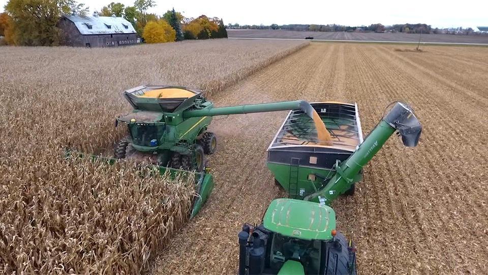 A machine harvesting corn.