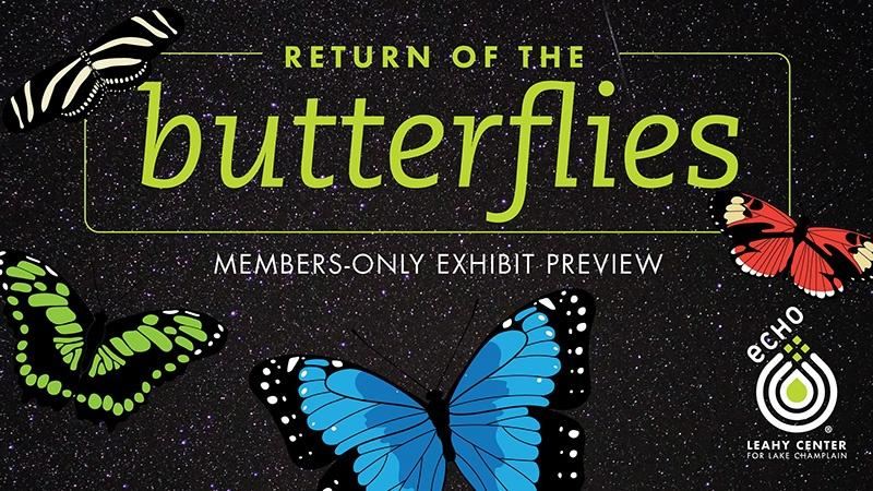 photo of butterflies / ECHO logo