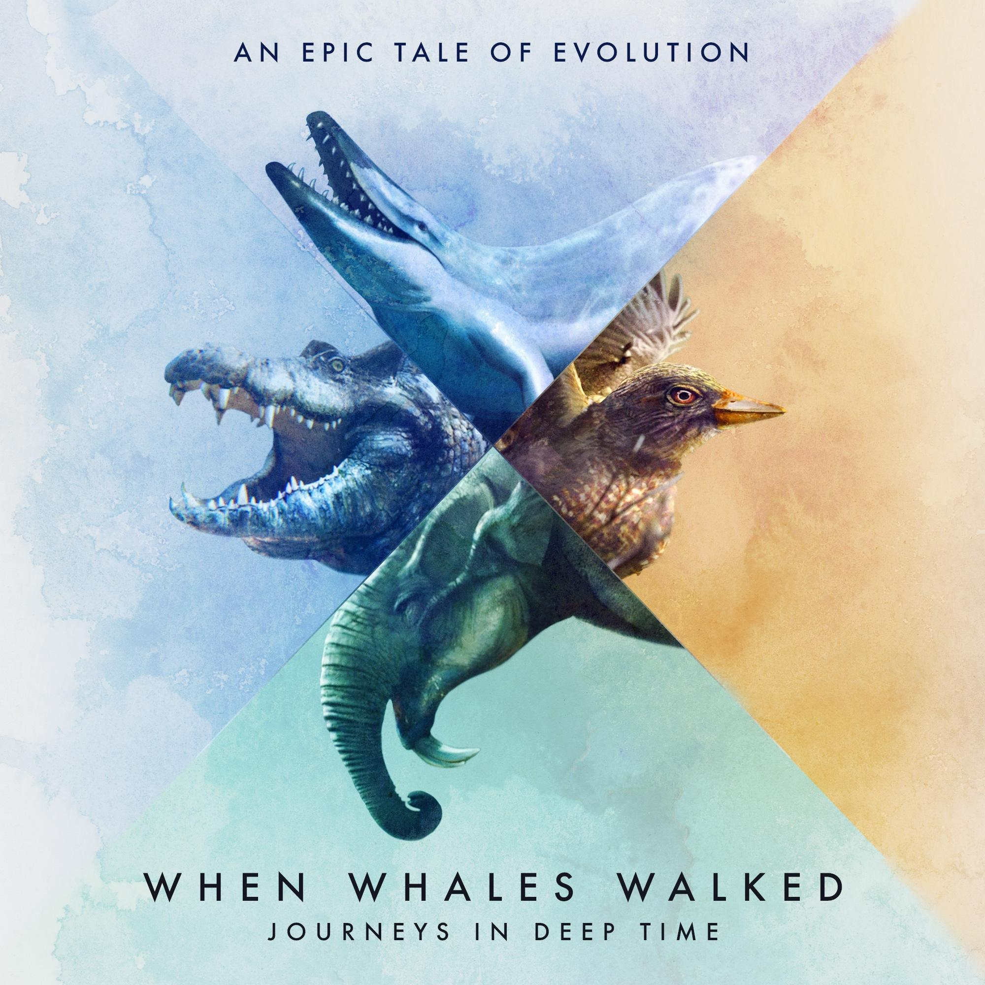 When Whales Walked key image