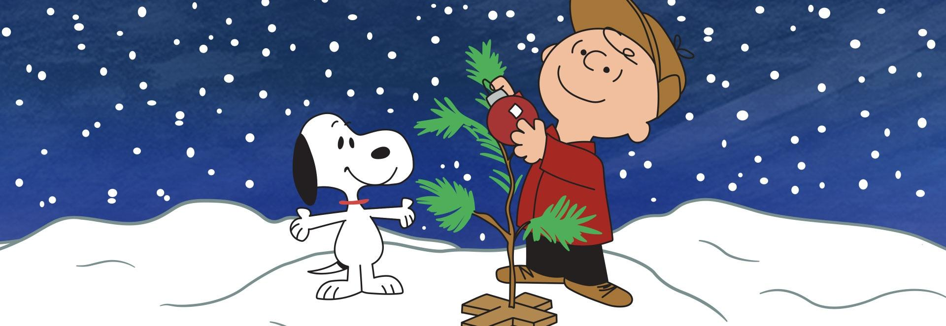 Snoopy and Charlie Brown stand outside in the snow as they decorate a less than full Christmas tree.