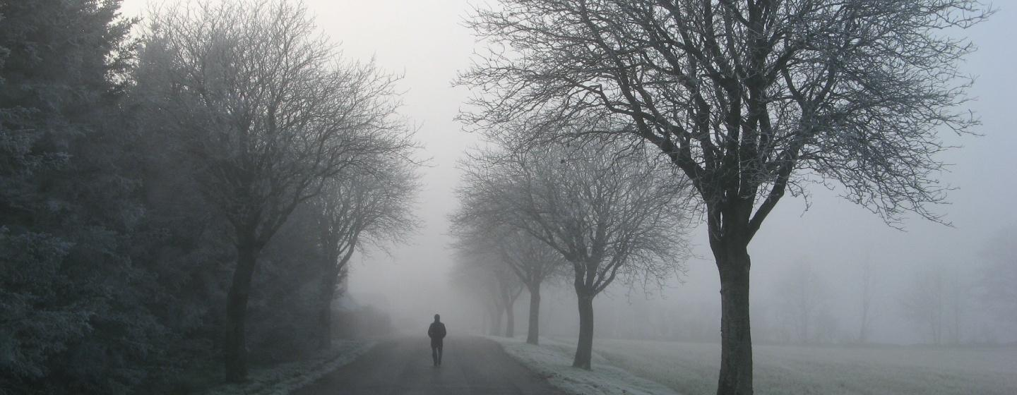 Person walking alone on a road with bare trees and fog
