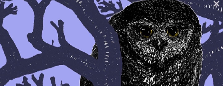 Owl digital collage work by artist Tate Klacsmann