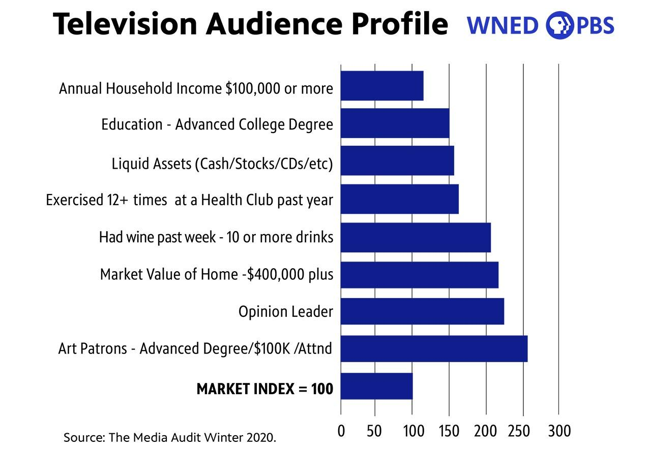 Television Audience Profile