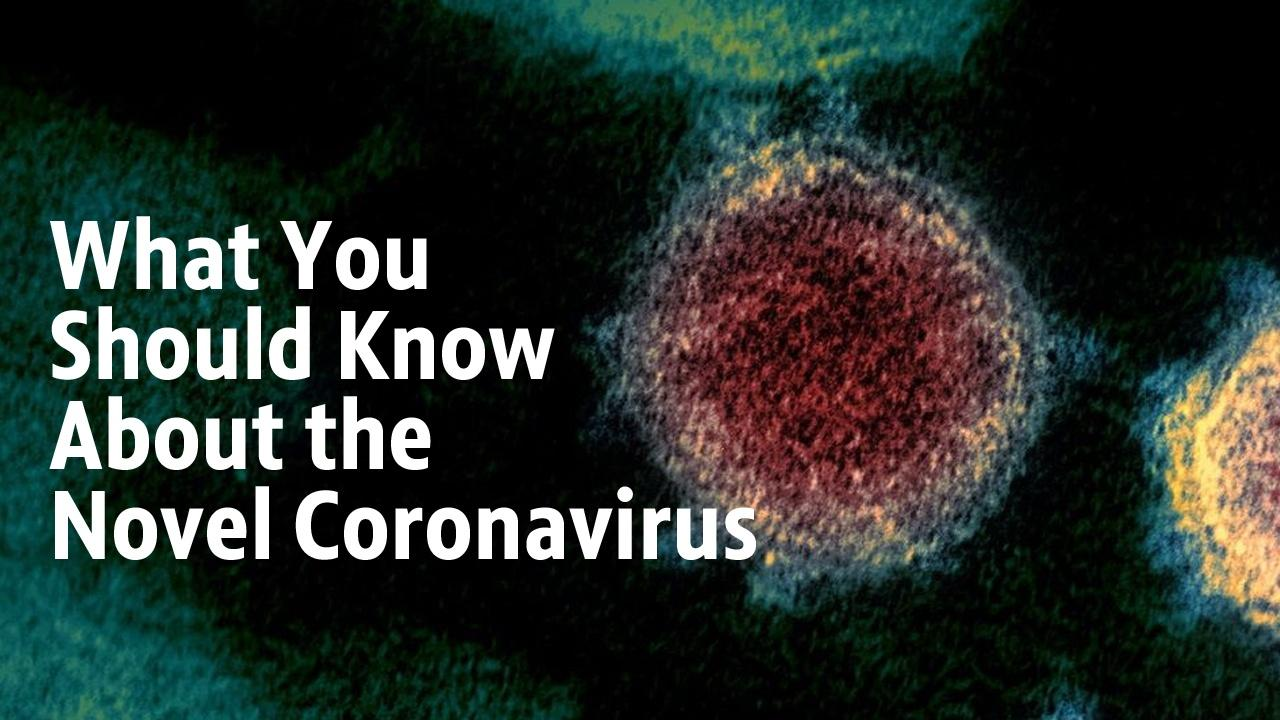 What uou should know about the novel coronavirus