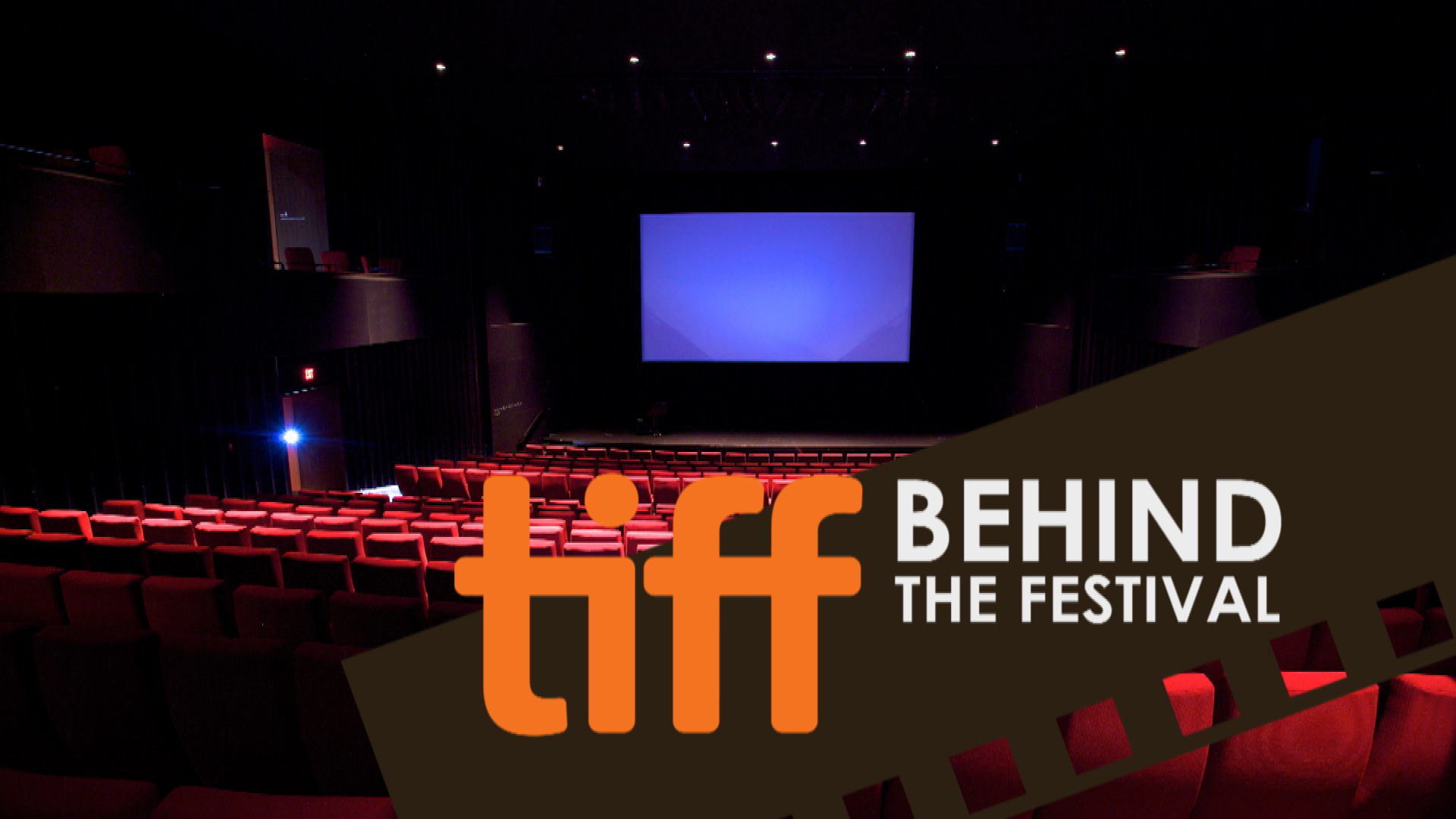 tiff behind the festival