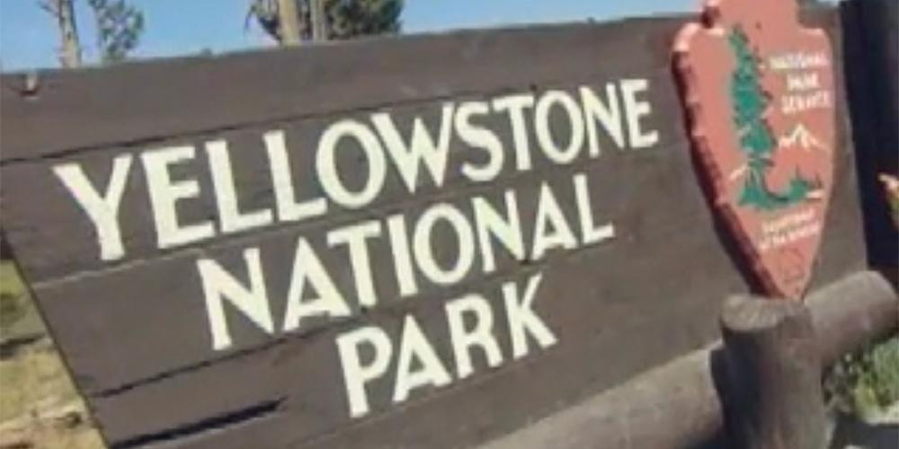 A Visit to Yellowstone