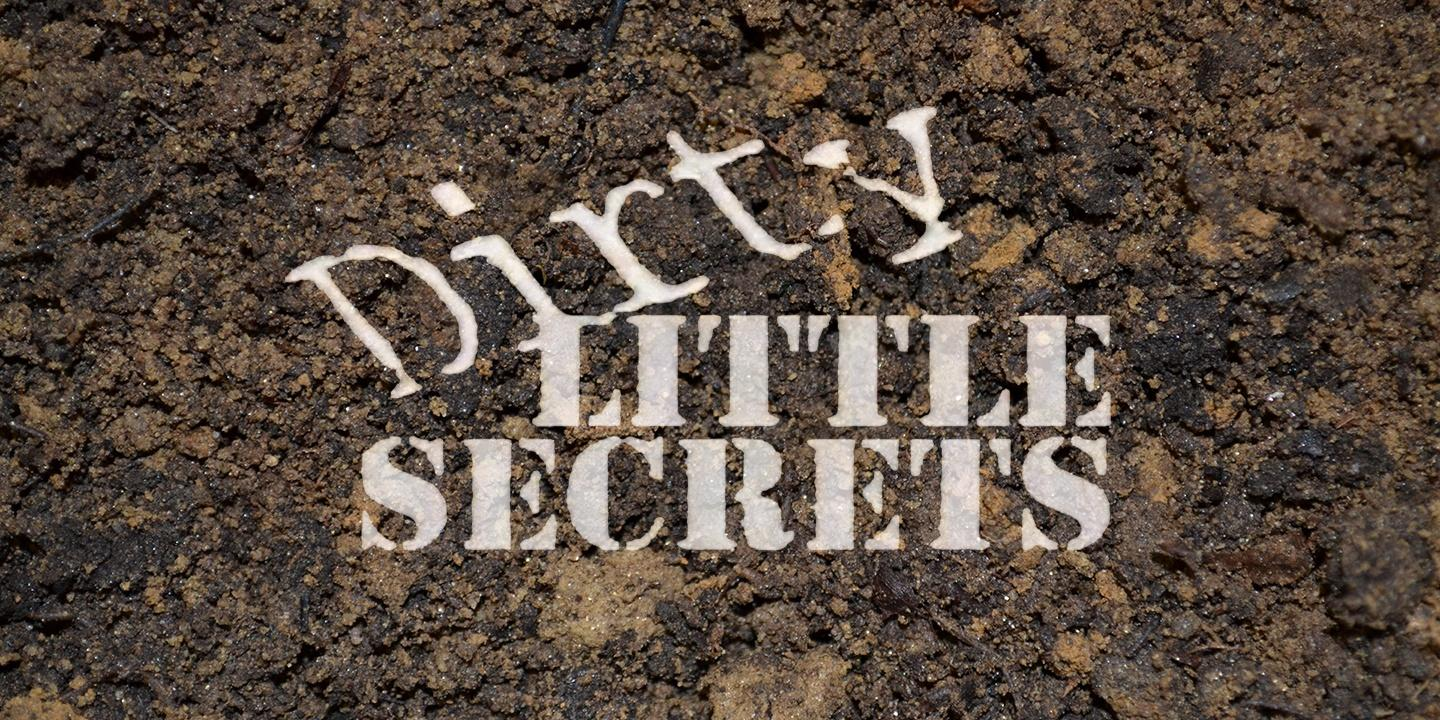 Dirty Little Secrets: Foundations From the Past