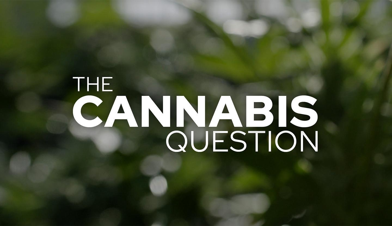 Nova, The Cannabis Question