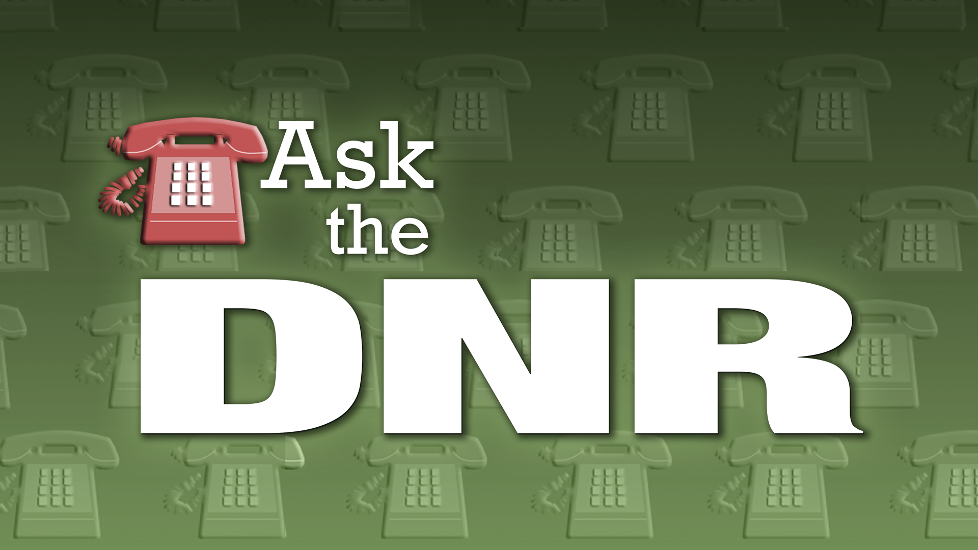 Ask the DNR