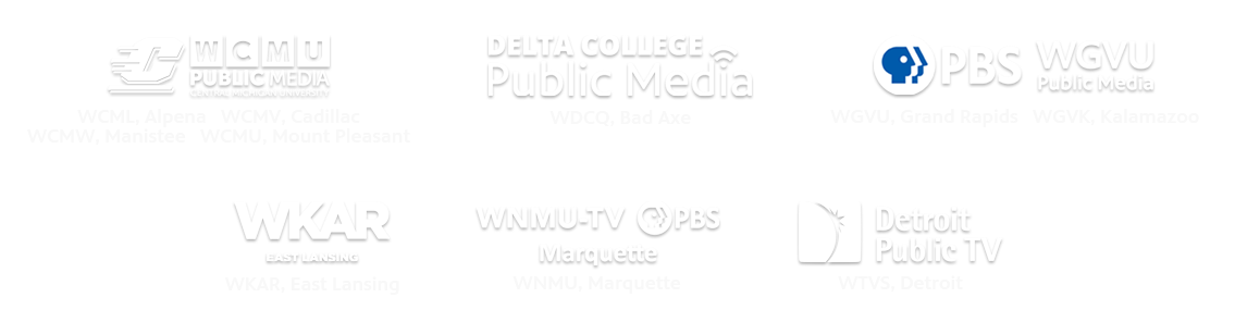 Michigan Learning Channel Public Television Partnerships