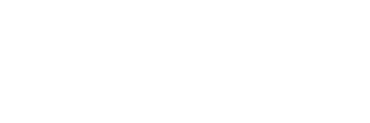 NPT's Nashville: The 20th Century in Photographs Volume 4
