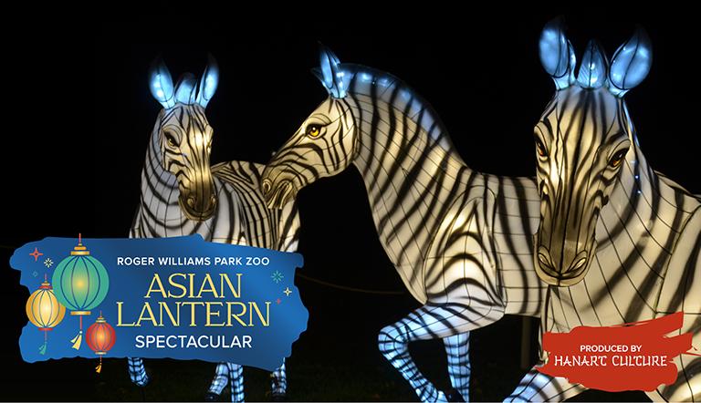 Lanterns in the shape of zebras.