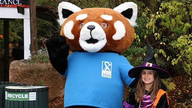 A person dressed in a red panda costume and waving while standing next to a child dressed as a witch