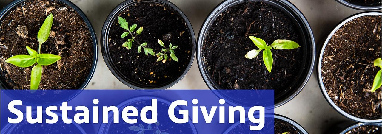 Sustained Giving