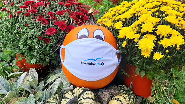Pumpkin with Rhode Island PBS face mask surrounded by mums and gourds.