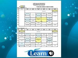 Learn Program Grid