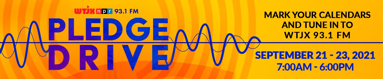 Pledge Drive Website Banner