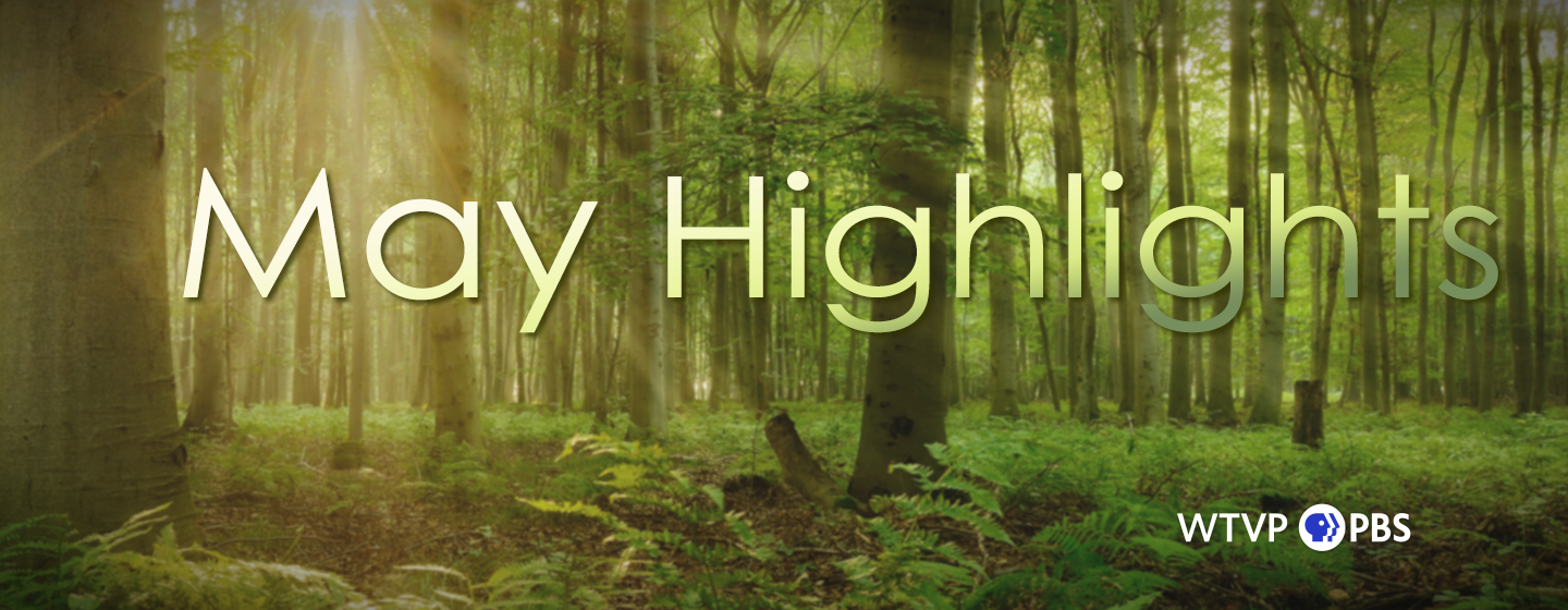 Forest with the words May Highlights