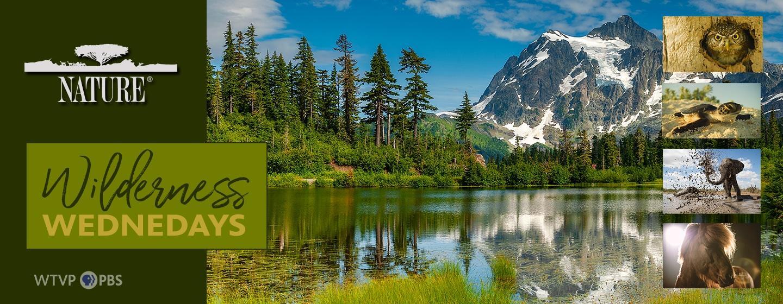 Nature Wilderness Wednesdays