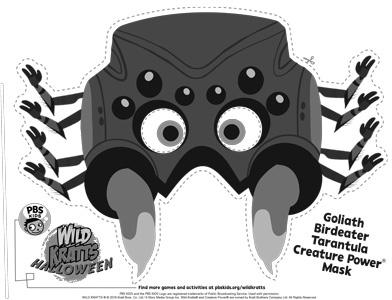 Wild Kratts Spider Mask