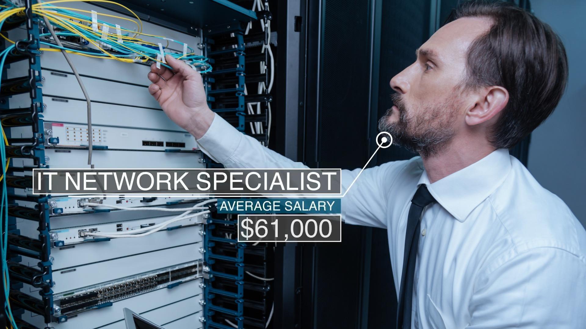 IT Network Specialist