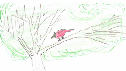 A Tale of the Helpless Bird by Bilal Qayyum