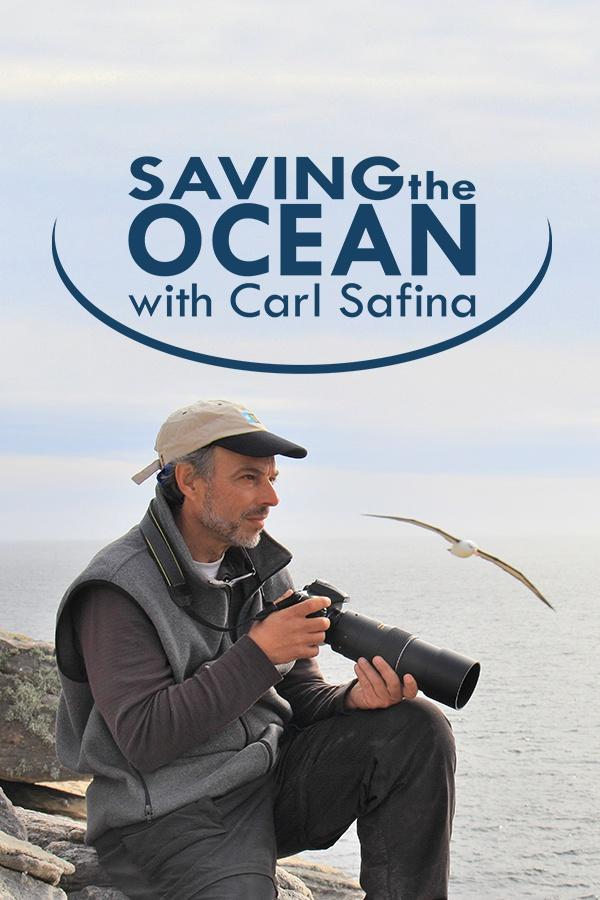 Saving the Ocean on FREECABLE TV