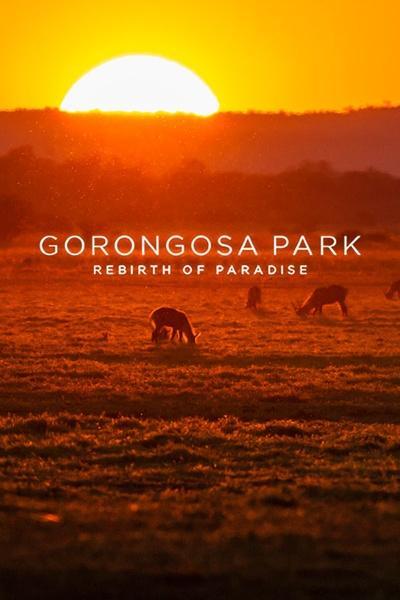 Gorongosa Park