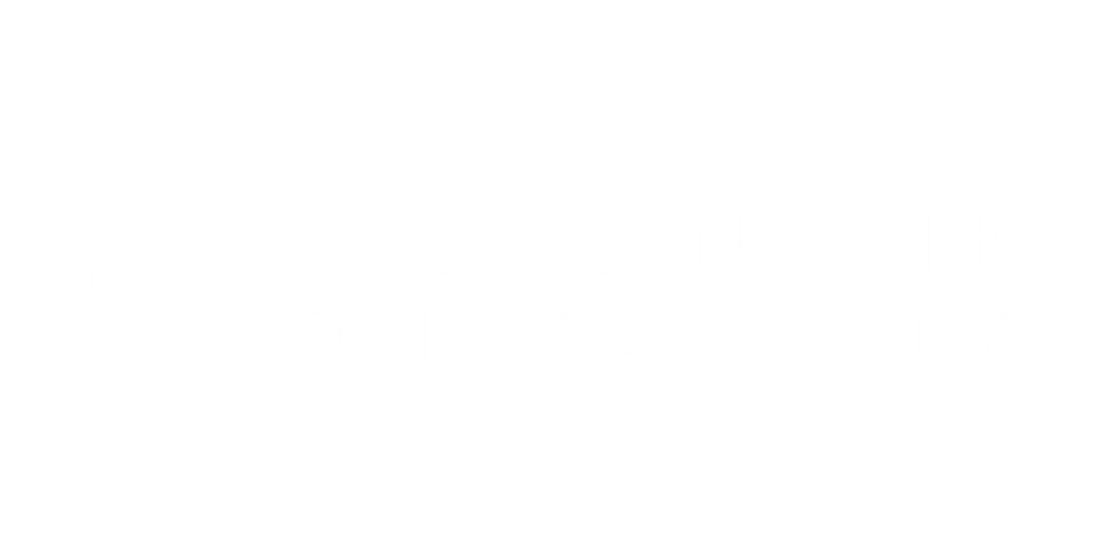 MSU Video