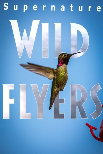 Supernature – Wild Flyers