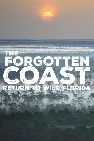 The Forgotten Coast: Return to Wild Florida