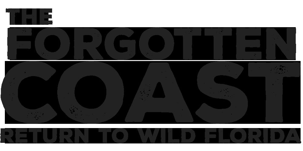 The Forgotten Coast: Return to Wild Florida