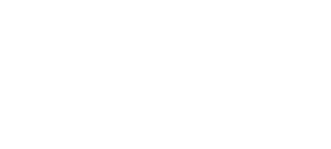The New Entrepreneur: Odyssey for a Dream